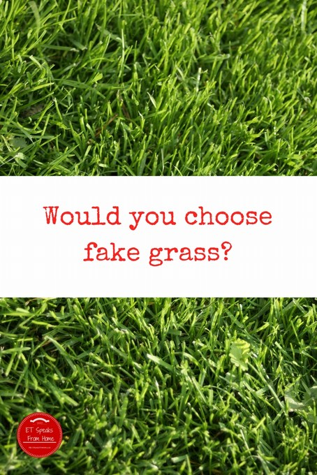 Would you choose fake grass
