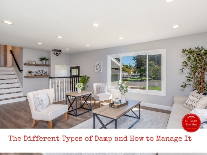 The Different Types of Damp and How to Manage It