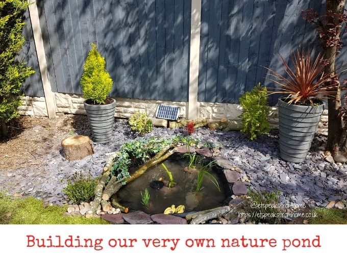 how to build nature wildlife pond